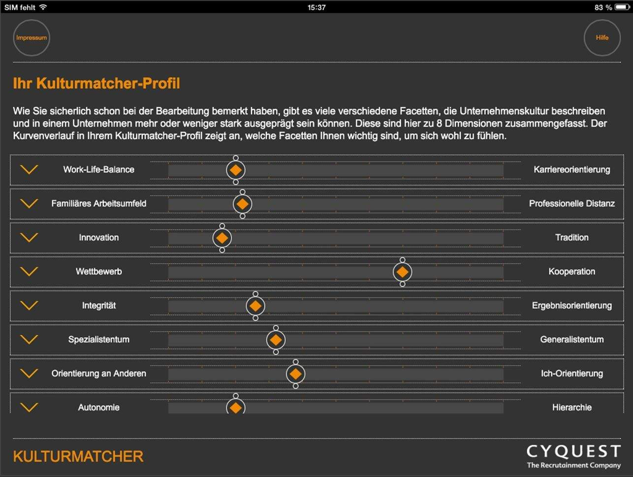 Beispiel-Profil 1 im Kulturmatcher.